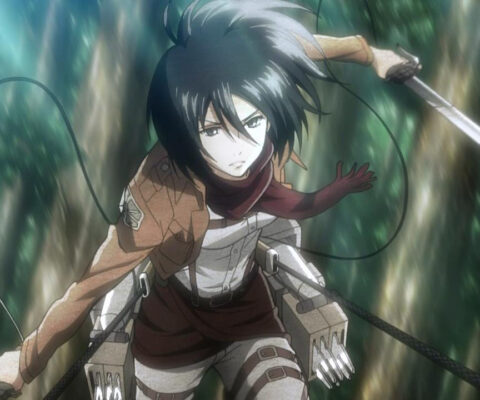Mikasa Ackerman Costume Stat Page Up!