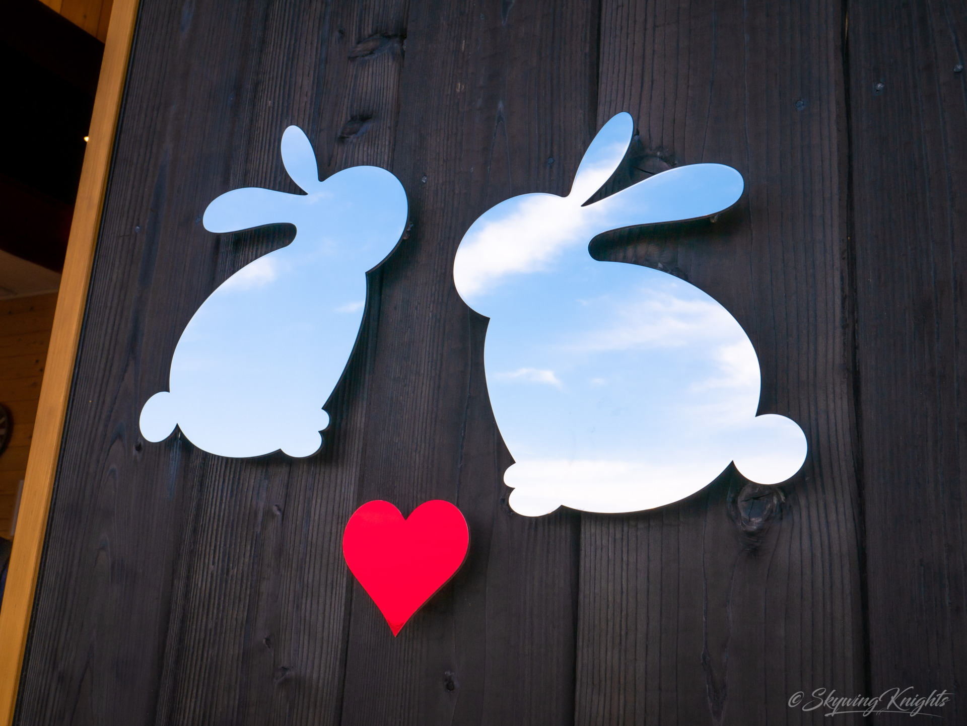Travels: The Bunny Island (Usagishima) – A Cuteness Overdose!