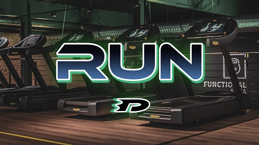 Run – A Danny Phantom Story